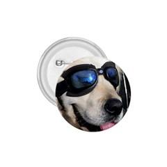Cool Dog  1 75  Button by Siebenhuehner