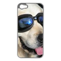 Cool Dog  Apple Iphone 5 Case (silver) by Siebenhuehner