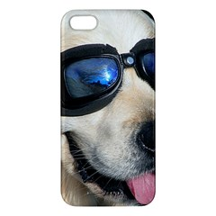 Cool Dog  Iphone 5 Premium Hardshell Case by Siebenhuehner