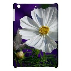 Cosmea   Apple Ipad Mini Hardshell Case by Siebenhuehner