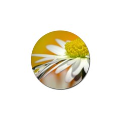 Daisy With Drops Golf Ball Marker 4 Pack by Siebenhuehner