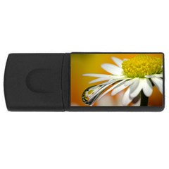 Daisy With Drops 4gb Usb Flash Drive (rectangle) by Siebenhuehner