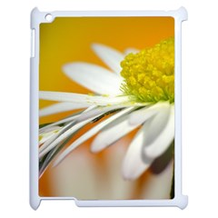 Daisy With Drops Apple Ipad 2 Case (white) by Siebenhuehner