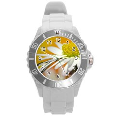 Daisy With Drops Plastic Sport Watch (large) by Siebenhuehner