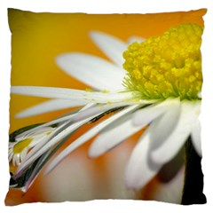 Daisy With Drops Large Cushion Case (two Sided)  by Siebenhuehner