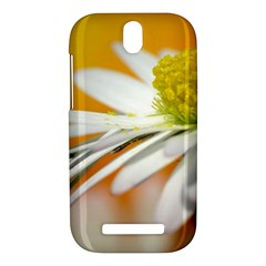 Daisy With Drops HTC One SV Hardshell Case by Siebenhuehner