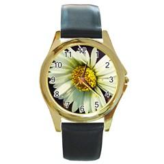 Daisy Round Metal Watch (gold Rim)  by Siebenhuehner