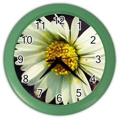 Daisy Wall Clock (color) by Siebenhuehner