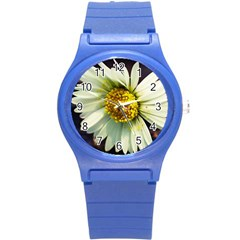 Daisy Plastic Sport Watch (small) by Siebenhuehner