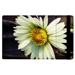 Daisy Apple Ipad 2 Flip Case by Siebenhuehner
