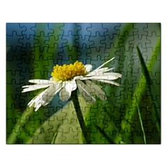 Daisy Jigsaw Puzzle (rectangle) by Siebenhuehner