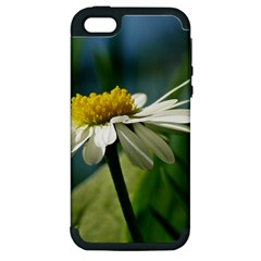 Daisy Apple Iphone 5 Hardshell Case (pc+silicone) by Siebenhuehner