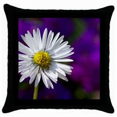 Daisy Black Throw Pillow Case by Siebenhuehner