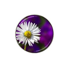 Daisy Golf Ball Marker 4 Pack (for Hat Clip) by Siebenhuehner