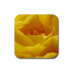 Yellow Rose Drink Coasters 4 Pack (square) by Siebenhuehner