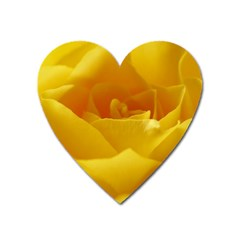 Yellow Rose Magnet (heart) by Siebenhuehner