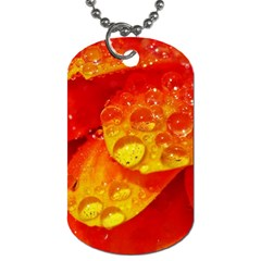 Waterdrops Dog Tag (one Sided) by Siebenhuehner