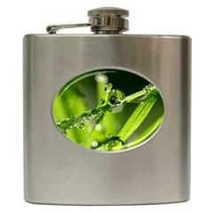 Waterdrops Hip Flask by Siebenhuehner