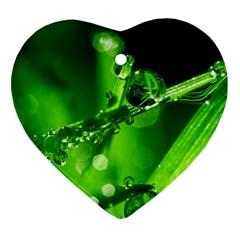 Waterdrops Heart Ornament by Siebenhuehner