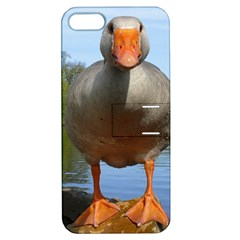 Geese Apple Iphone 5 Hardshell Case With Stand by Siebenhuehner