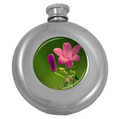 Campanula Close Up Hip Flask (round) by Siebenhuehner