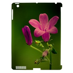 Campanula Close Up Apple Ipad 3/4 Hardshell Case (compatible With Smart Cover) by Siebenhuehner