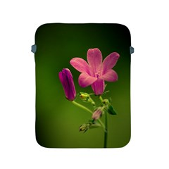 Campanula Close Up Apple Ipad 2/3/4 Protective Soft Case by Siebenhuehner