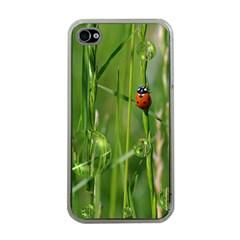 Ladybird Apple Iphone 4 Case (clear) by Siebenhuehner