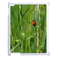 Ladybird Apple Ipad 2 Case (white) by Siebenhuehner