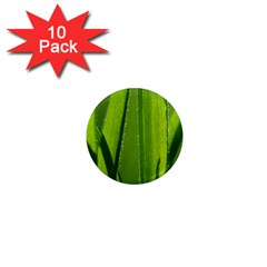 Grass 1  Mini Button Magnet (10 Pack)