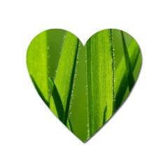 Grass Magnet (heart) by Siebenhuehner