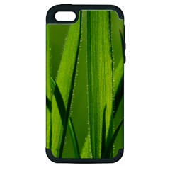 Grass Apple Iphone 5 Hardshell Case (pc+silicone) by Siebenhuehner