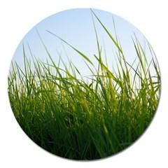 Grass Magnet 5  (round) by Siebenhuehner