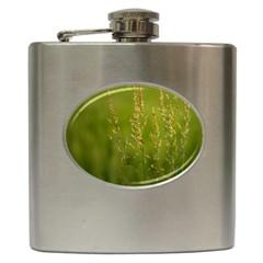 Grass Hip Flask by Siebenhuehner
