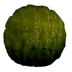Grass 18  Premium Round Cushion  by Siebenhuehner