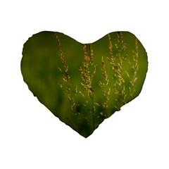 Grass 16  Premium Heart Shape Cushion  by Siebenhuehner