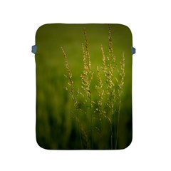 Grass Apple Ipad 2/3/4 Protective Soft Case by Siebenhuehner