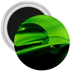 Green Drop 3  Button Magnet by Siebenhuehner