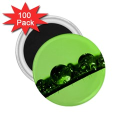 Green Drops 2 25  Button Magnet (100 Pack)
