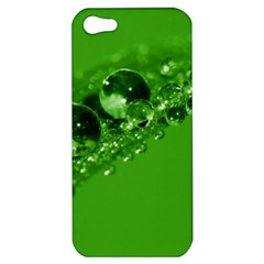 Green Drops Apple Iphone 5 Hardshell Case by Siebenhuehner