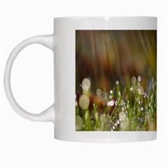 Sundrops White Coffee Mug by Siebenhuehner