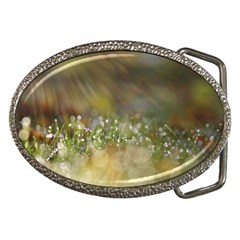 Sundrops Belt Buckle (oval)