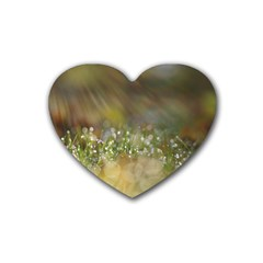 Sundrops Drink Coasters 4 Pack (heart)  by Siebenhuehner