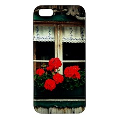 Window Iphone 5s Premium Hardshell Case by Siebenhuehner