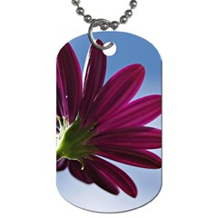Daisy Dog Tag (two Sided)