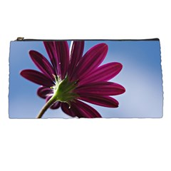 Daisy Pencil Case by Siebenhuehner