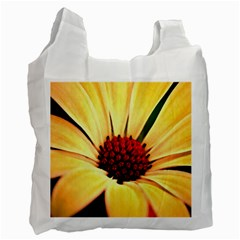 Osterspermum Recycle Bag (two Sides) by Siebenhuehner