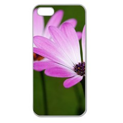 Osterspermum Apple Seamless Iphone 5 Case (clear) by Siebenhuehner