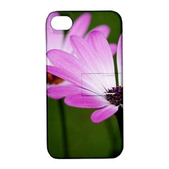 Osterspermum Apple Iphone 4/4s Hardshell Case With Stand by Siebenhuehner