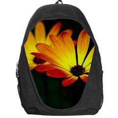 Osterspermum Backpack Bag by Siebenhuehner
